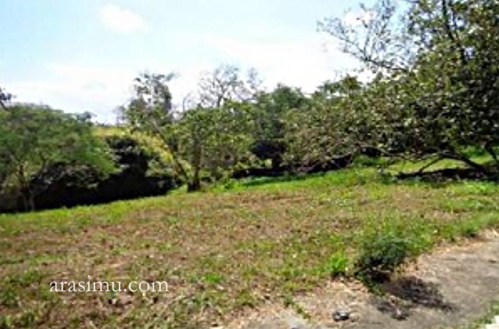 Canyonwoods-Laurel-Batangas